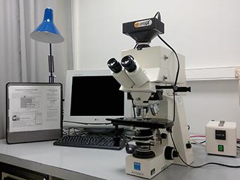 Microscope plein champ avec caméra couleur