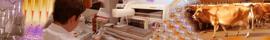 Bienvenue sur le site du laboratoire Phénothypage Endocrinologie